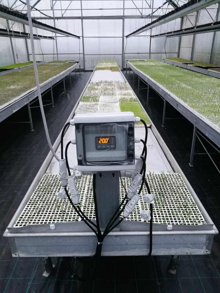 example of installation of heating mats for greenhouses