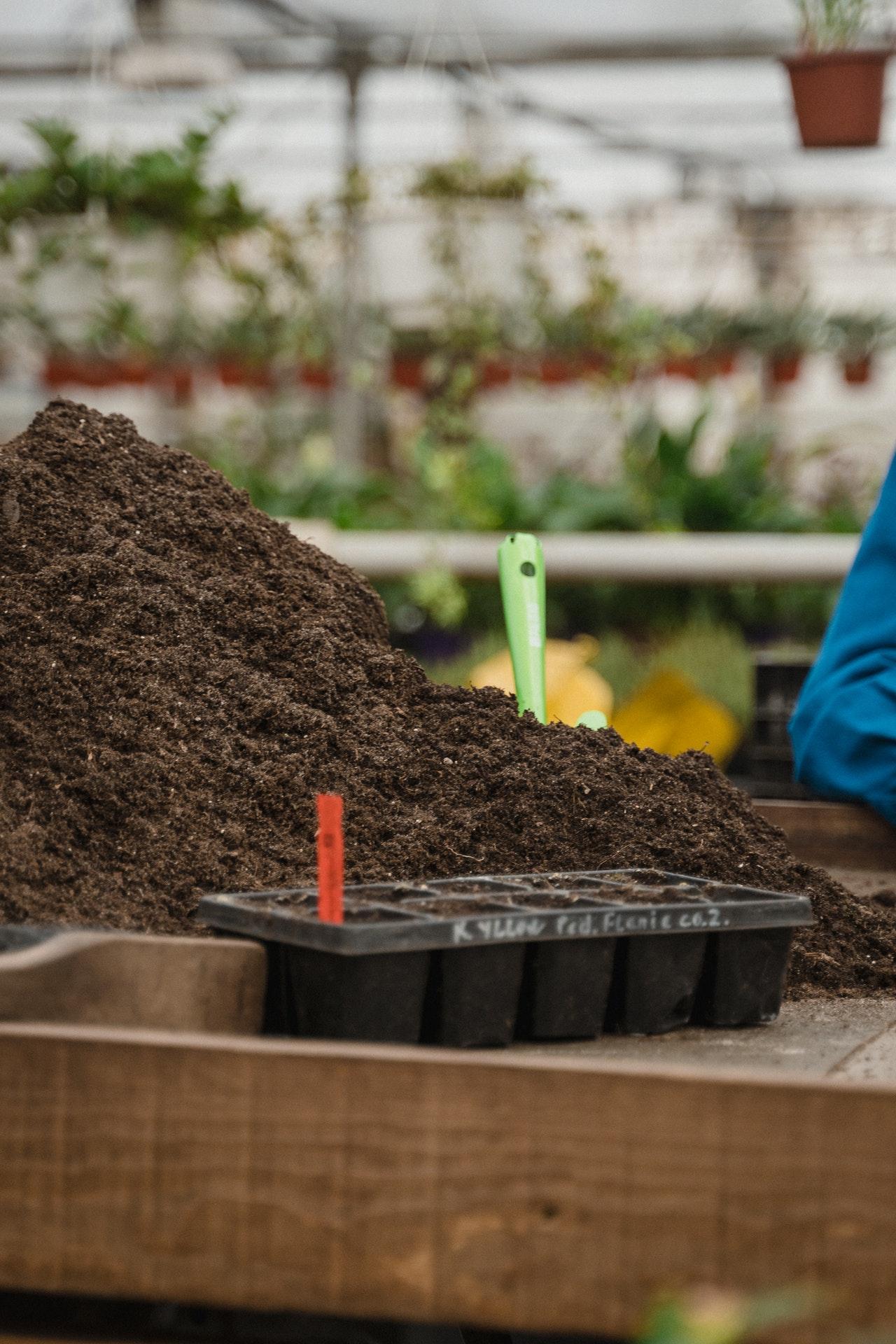 importanza di tenere i semi alla loro temperatura ottimale