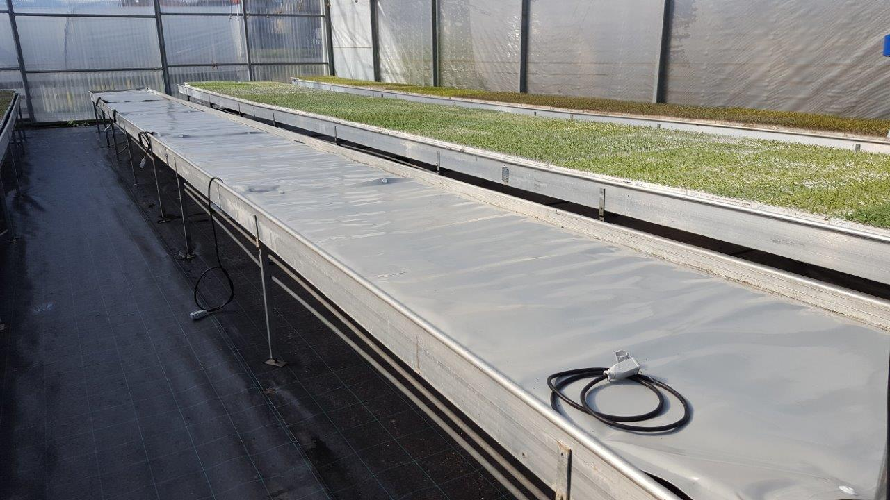 heating mats placed on benches